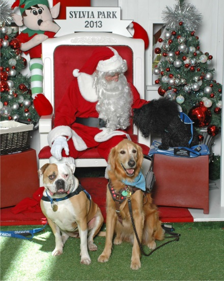 Tana, Koda and Milan with Santa
